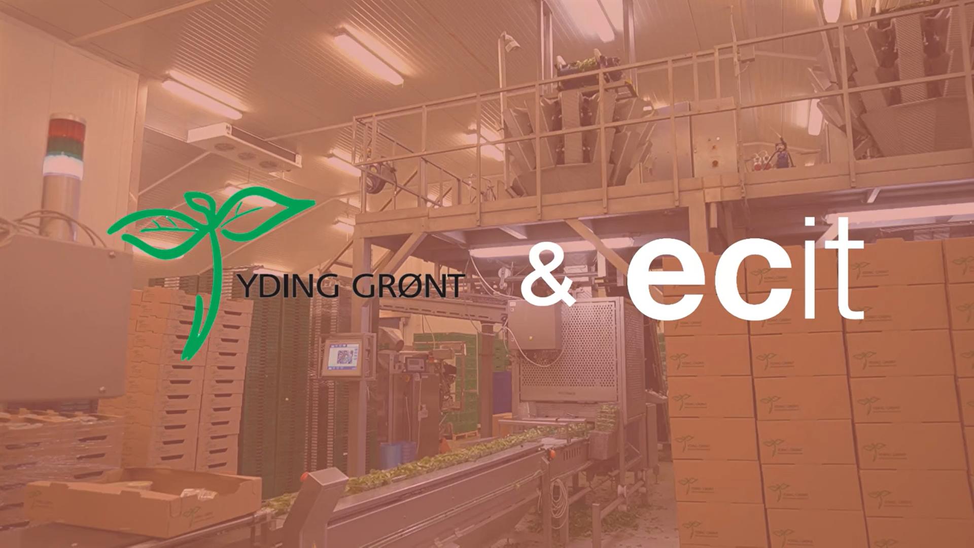 """Yding Grønt om ECIT: """"Sikkerhed var afgørende for valg af samarbejdspartner"""""""