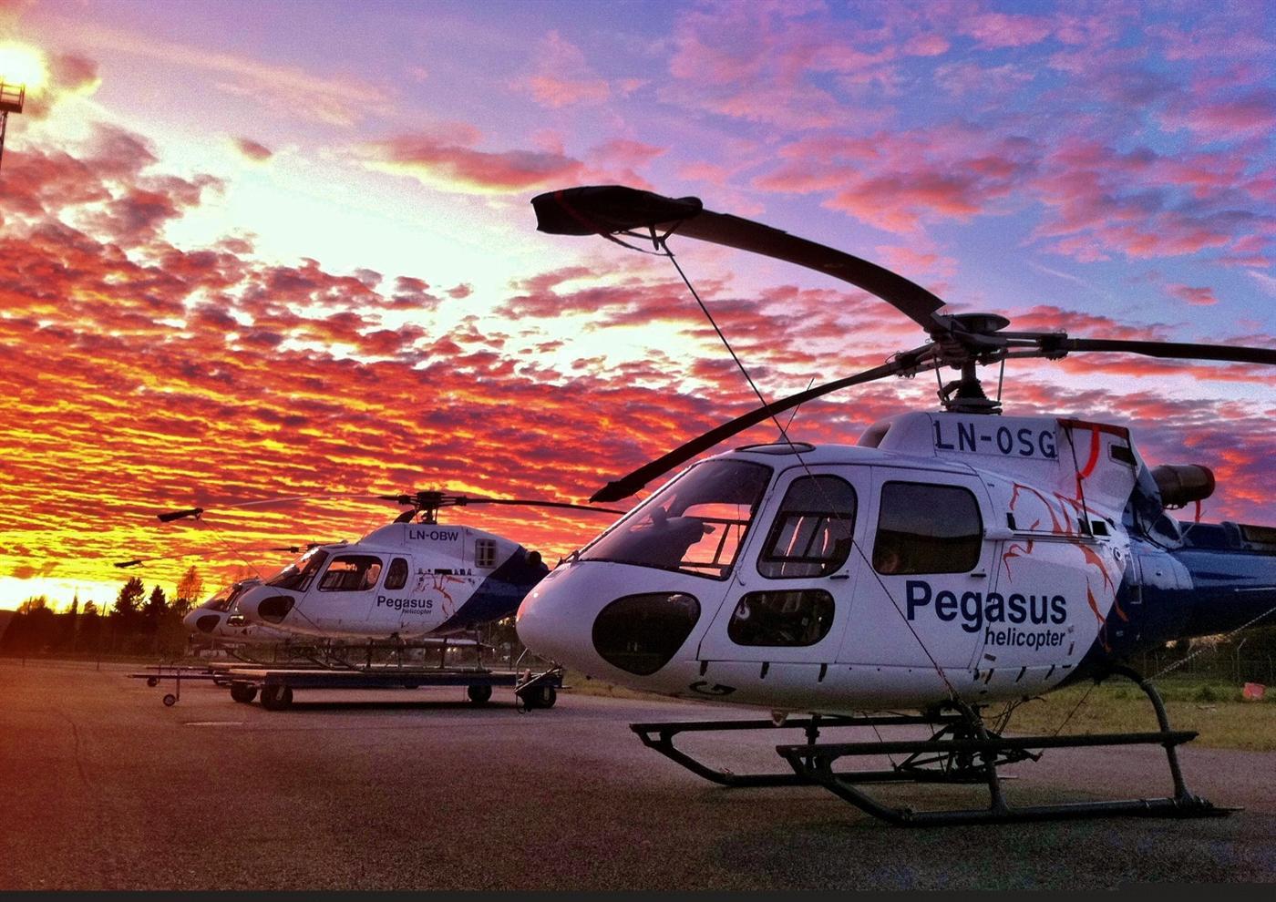 Pegasus Helicopter AS: ECIT er en partner som forstår vår drift og kompleksistet